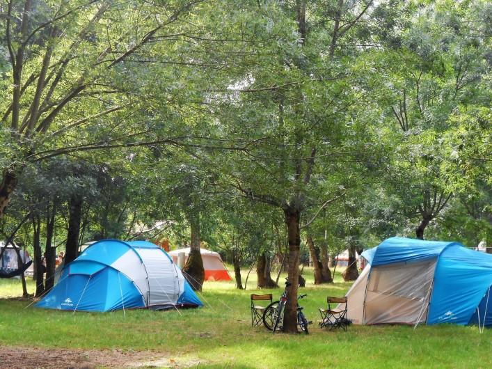 Location de vacances - Yourte à La Grève-sur-Mignon - espace camping ombragé