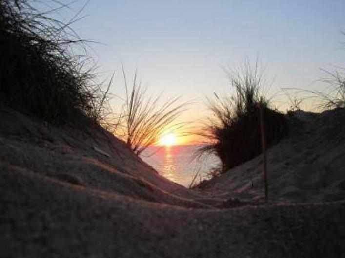 Location de vacances - Gîte à Pirou - les dunes