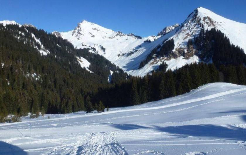 Location de vacances - Chalet à Le Praz de Lys - Vue du salon, départ ski au pied!