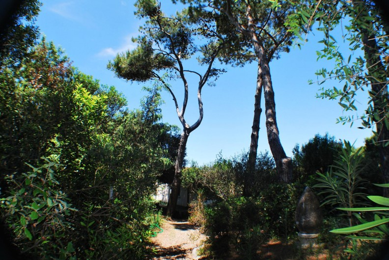 Location de vacances - Villa à Albinia - Jardin