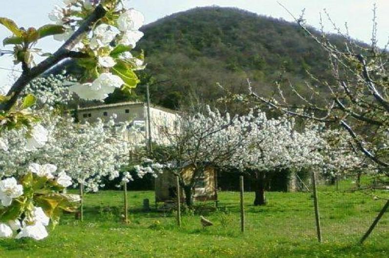 Location de vacances - Gîte à Mirmande - La propriété