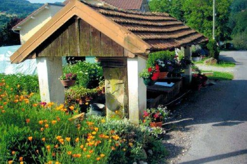 Location de vacances - Gîte à Le Val-d'Ajol