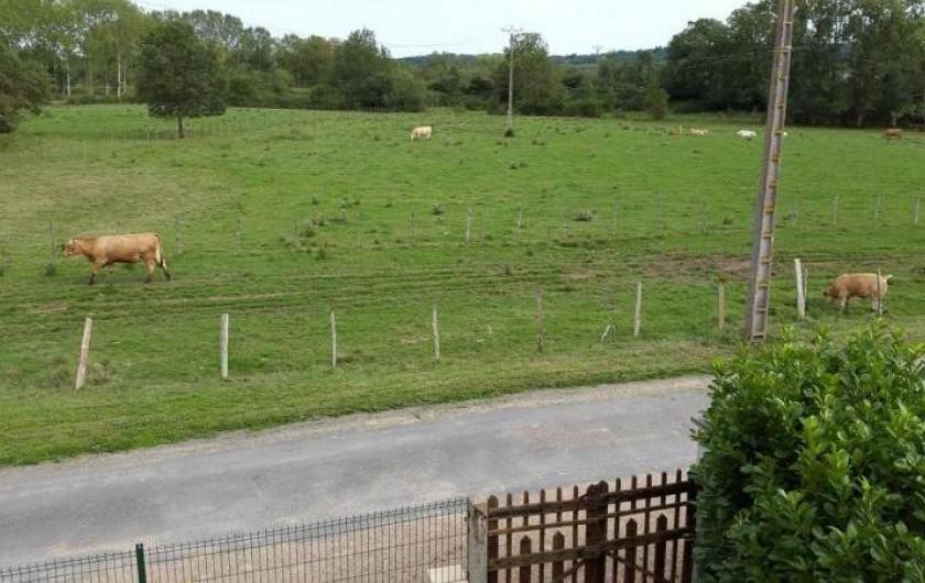 Location de vacances - Gîte à Bréhémont - vue de devant