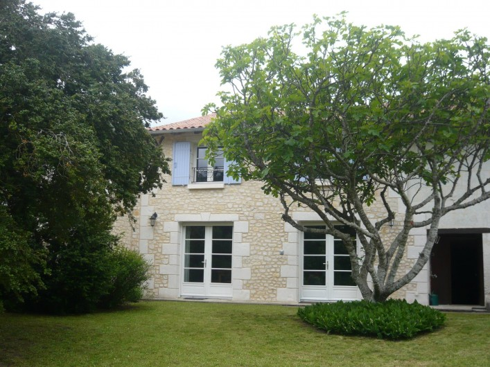 Location de vacances - Gîte à Saint-Aulaye - Le figuier et le buis centenaire seront vous faire de l'ombre en été