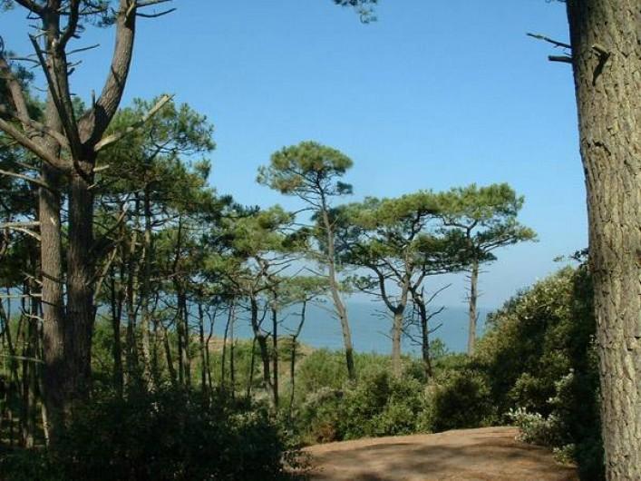 Location de vacances - Bungalow - Mobilhome à Saint-Brevin-les-Pins - Forêt de la Pierre Attelée. Chemin conduisant du mobil-home à la plage