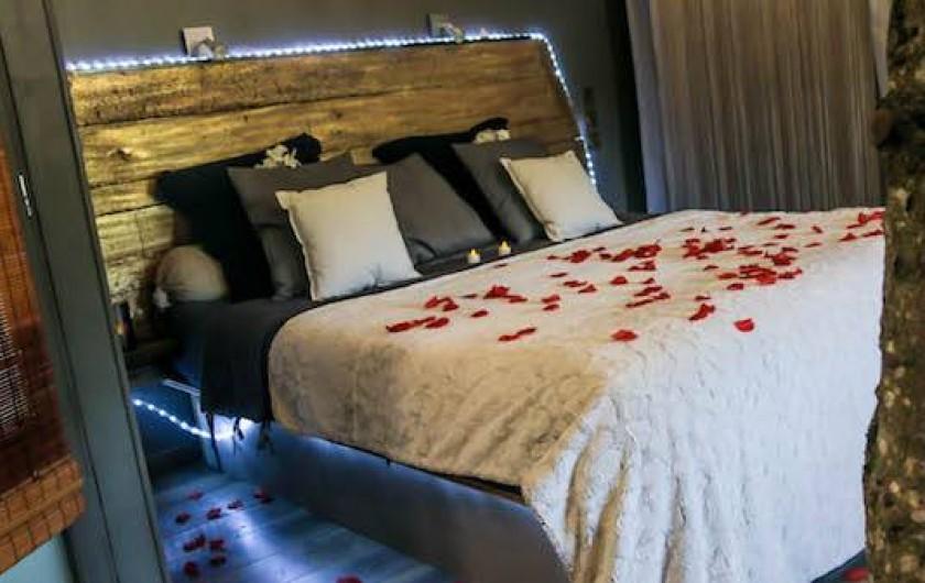 """Location de vacances - Appartement à Rontalon - le loft """"papillons"""""""