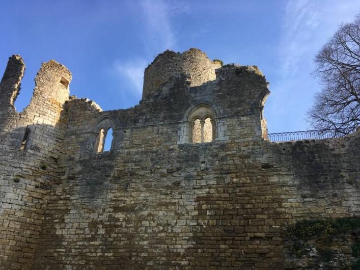 Location de vacances - Château - Manoir à Montreuil-Bonnin - Vue des fossés sur la forteresse