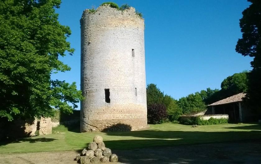 Location de vacances - Château - Manoir à Montreuil-Bonnin - le donjon dans la cour
