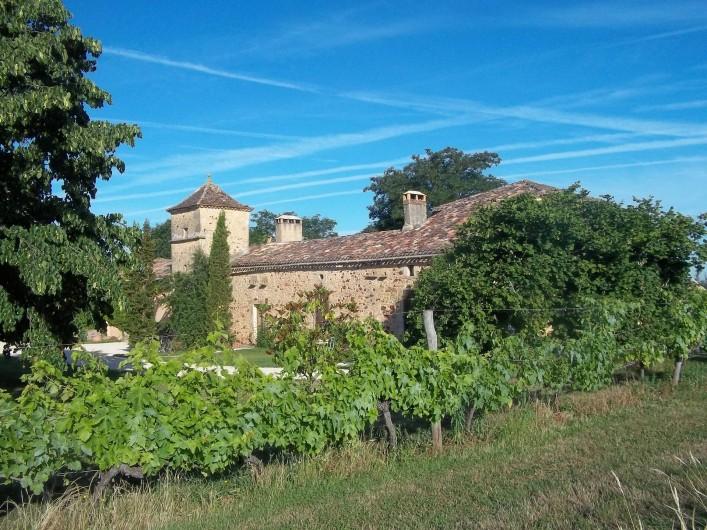 Location de vacances - Gîte à Biron - 8 hectare de nature et les vignes en Bio sur le coteau autour de la propriété
