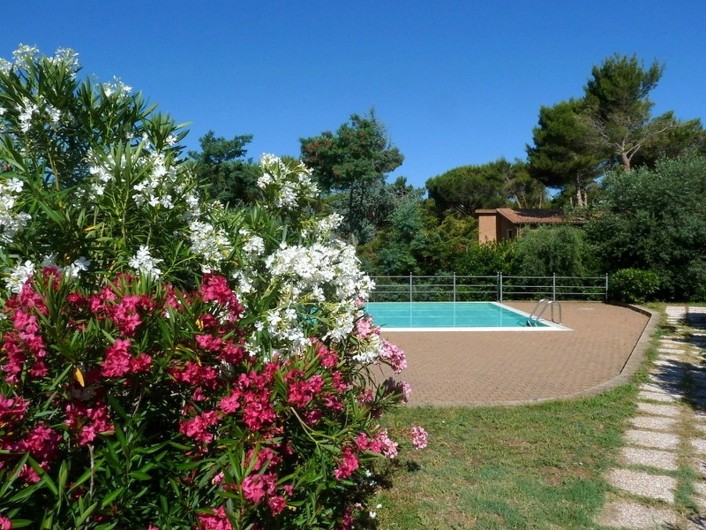 Location de vacances - Appartement à Guardistallo - Vue sur la piscine