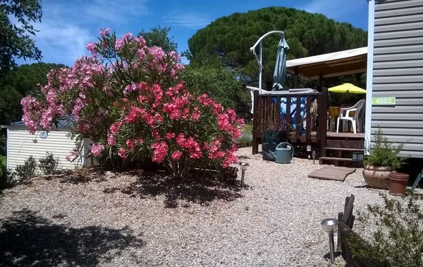Location de vacances - Bungalow - Mobilhome à Le Muy - Vous êtes arrivés...