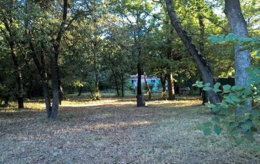 Location de vacances - Maison - Villa à Vers-Pont-du-Gard - le sous bois chênes  verts et blancs
