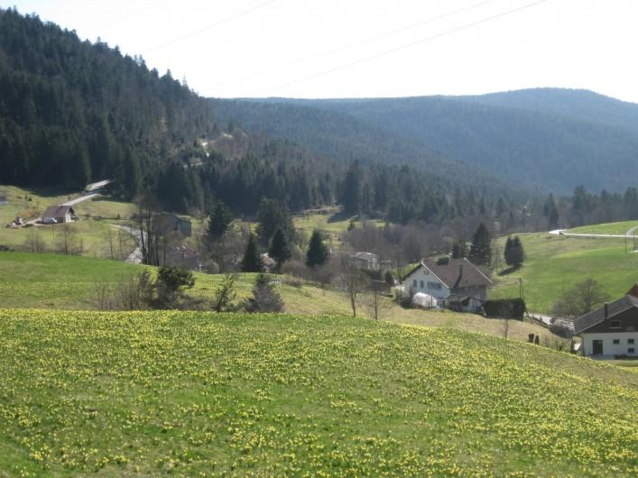 Location de vacances - Appartement à Gérardmer - printemps