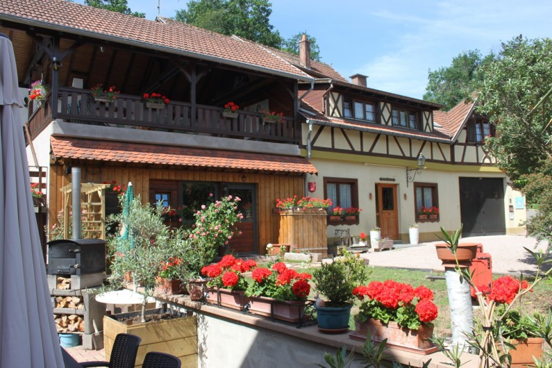 Location de vacances - Gîte à Nothalten - Le gîte en 2020