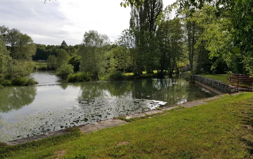 Location de vacances - Gîte à Chassignelles - Rivière de l'Armançon pour les baignades