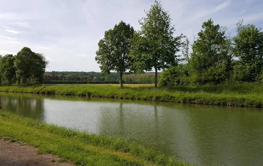 Location de vacances - Gîte à Chassignelles - Promenades le long du canal de Bourgogne, à pieds ou à vélos