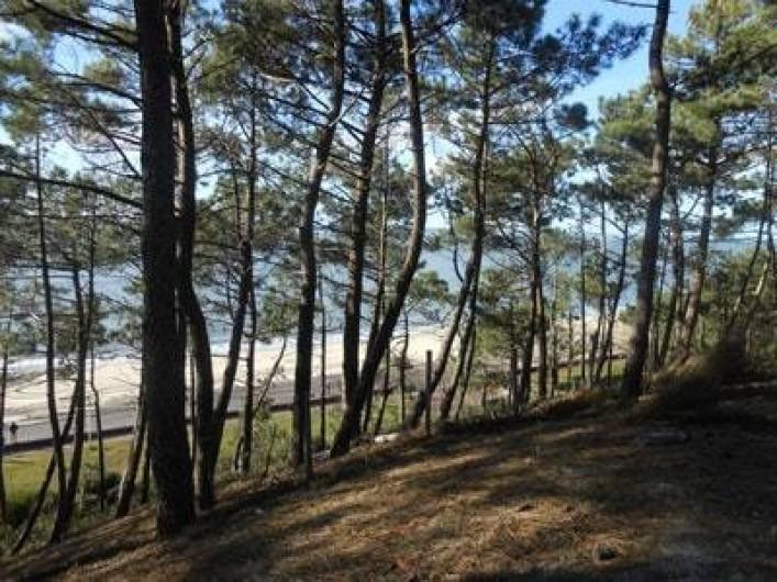 Location de vacances - Villa à Gujan-Mestras - les pinèdes landaises  en bordure d'océan