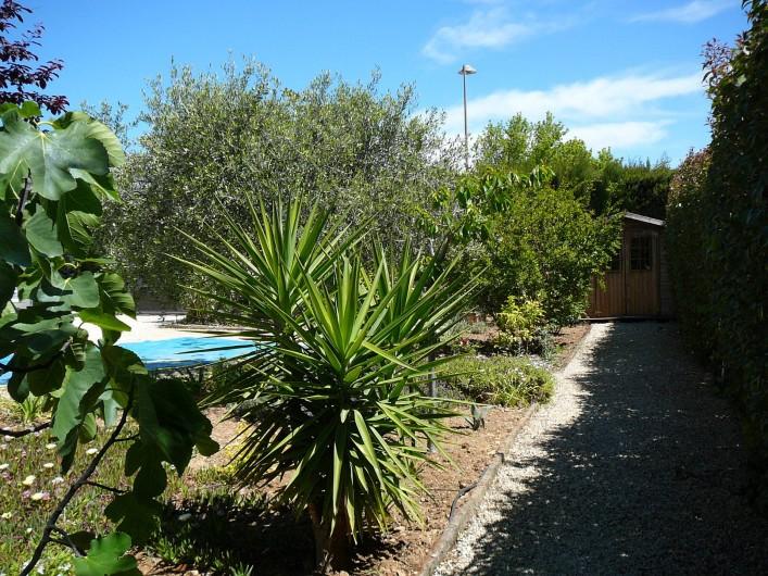Location de vacances - Villa à Saint-Cyr-sur-Mer - Jardin