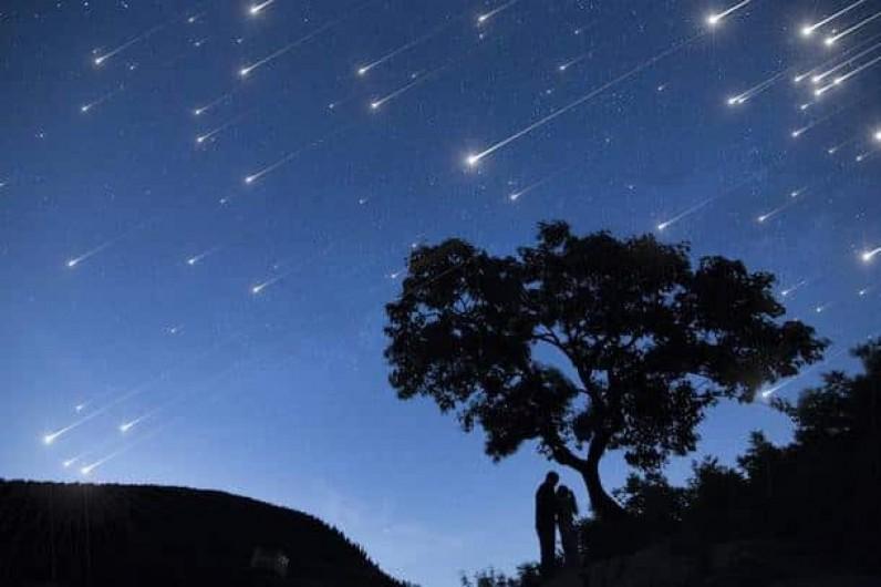 Location de vacances - Roulotte à La Chapelle-Blanche-Saint-Martin - Idéalement situé pour observer les étoiles, Domaine de la Grangée (37)