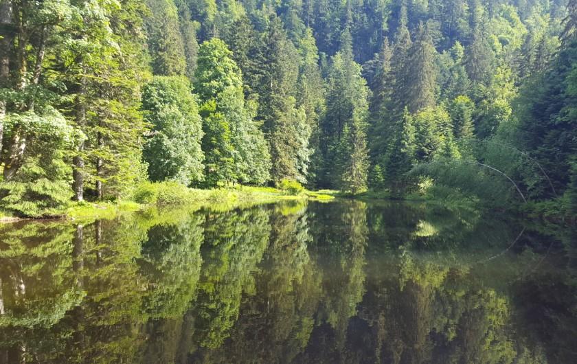 Location de vacances - Villa à La Bresse - Etang de Sèchemer
