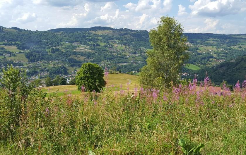 Location de vacances - Villa à La Bresse - Hauteurs de la Bresse