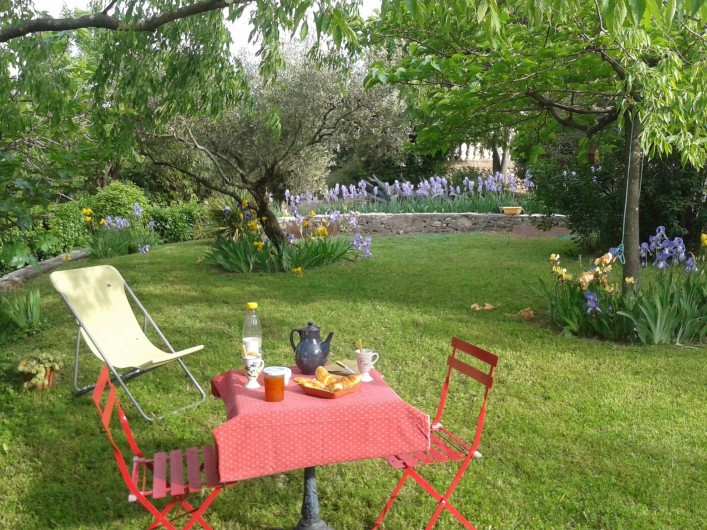 Location de vacances - Gîte à Nîmes - Coin petit déjeuner a l'ombre des oliviers