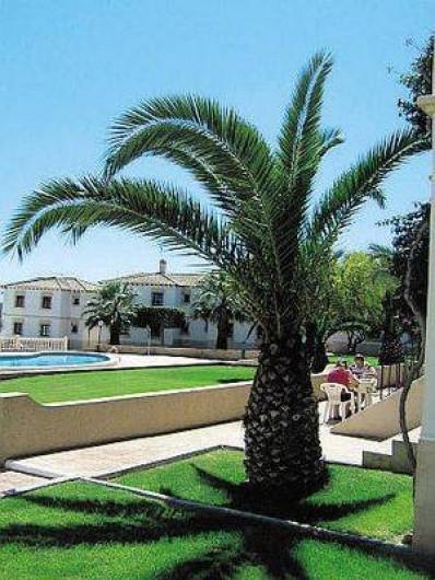 Location de vacances - Appartement à Torrevieja - Jardins