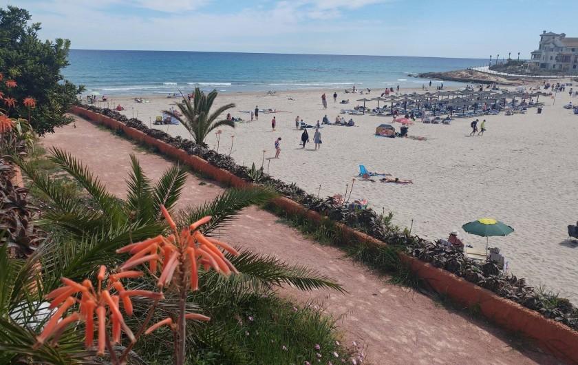 Location de vacances - Appartement à Torrevieja - Plages