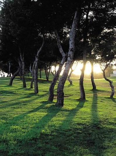 Location de vacances - Appartement à Torrevieja - Golfs