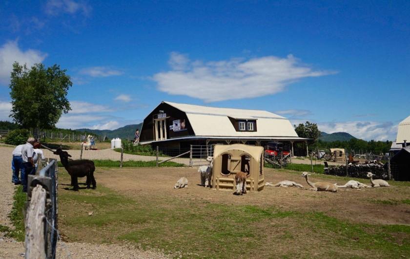 Location de vacances - Chalet à Les Éboulements - Alpagas