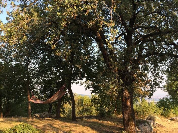 Location de vacances - Maison - Villa à Marano di Valpolicella - Zone des hamacs au bout de la première pelouse, vue à perte de vue...