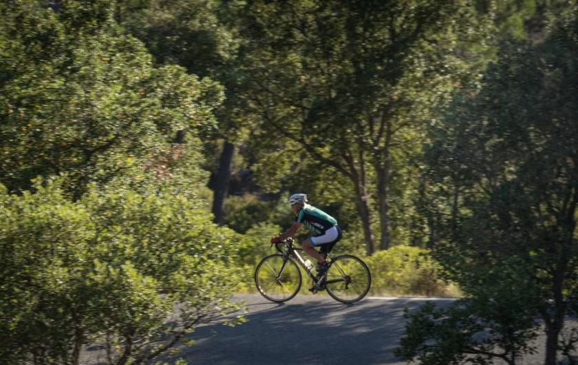Location de vacances - Mas à Bagnols-en-Forêt - Pour les entousiastes du vélo...il y a des routes magnifiques.