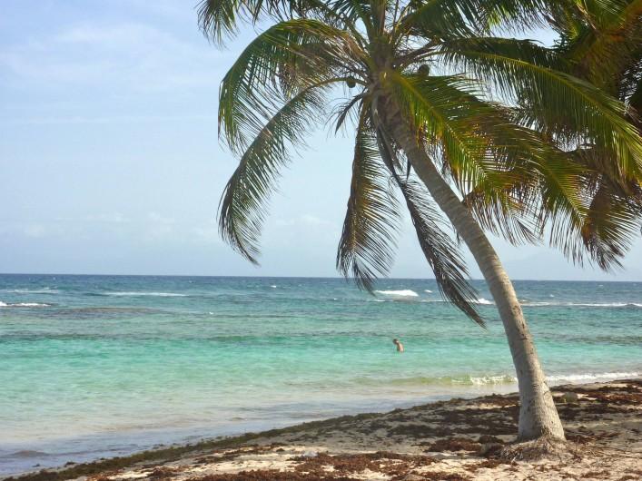 Location de vacances - Villa à Grand-Bourg - Plage  à 500m