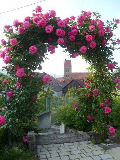 Location de vacances - Gîte à Eguisheim - L'été à Eguisheim
