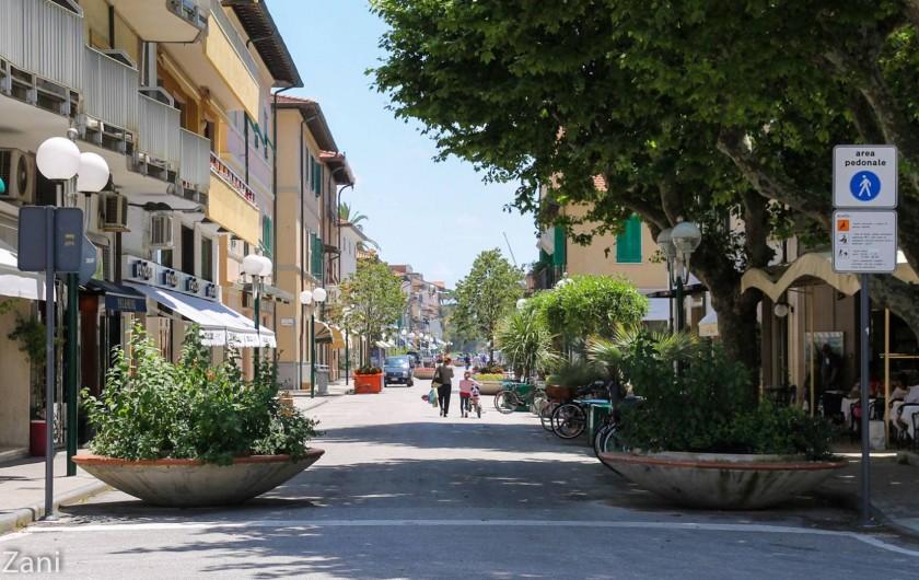 Location de vacances - Maison - Villa à Querceta - Forte dei Marmi (cer la e)ntre)