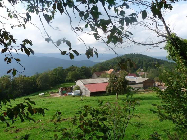 Location de vacances - Gîte à Breitenbach-Haut-Rhin - Petit hameau d'une vingtaine d'habitants