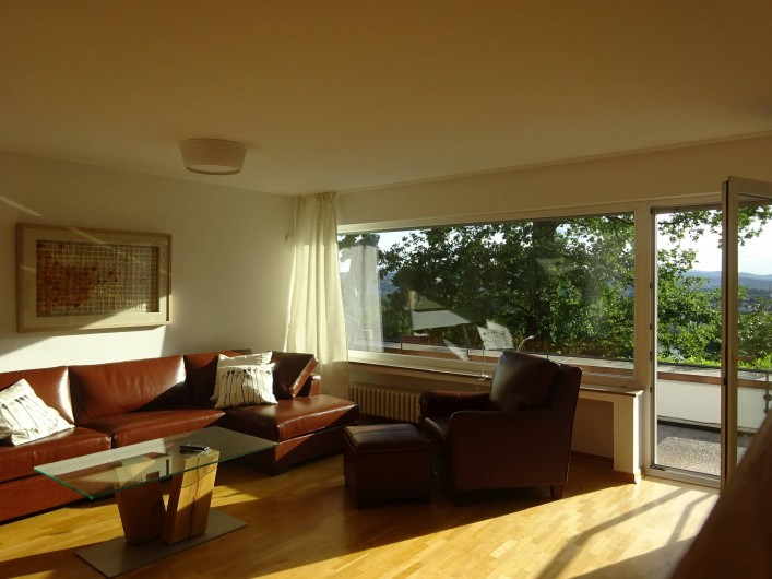 Location de vacances - Appartement à Linz - Salon Avec accès directe à la terrasse
