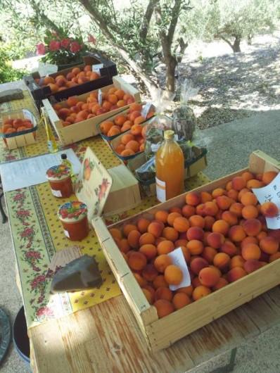Location de vacances - Appartement à Le Barroux - Vente d'abricots à la propriété
