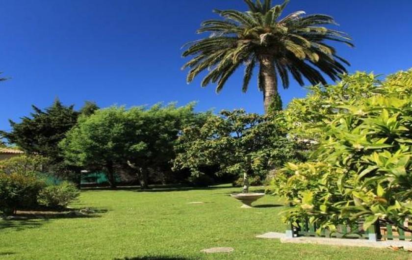 Location de vacances - Studio à Juan les Pins - Une vue du jardin