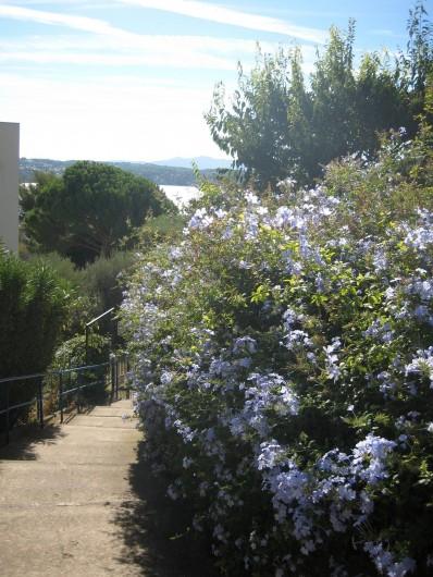 Location de vacances - Appartement à Bandol - L'escalier qui descend vers la mer