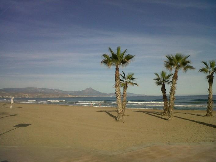 Location de vacances - Appartement à Alicante - La plage de San Juan, 7 kms de promenade !