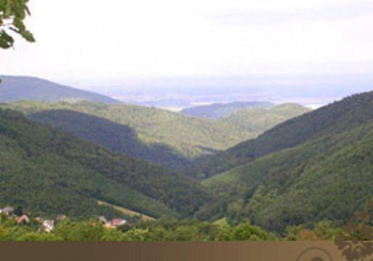 Location de vacances - Chalet à Labaroche