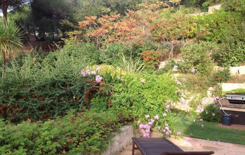 Location de vacances - Mas à La Croix-Valmer - Jardin