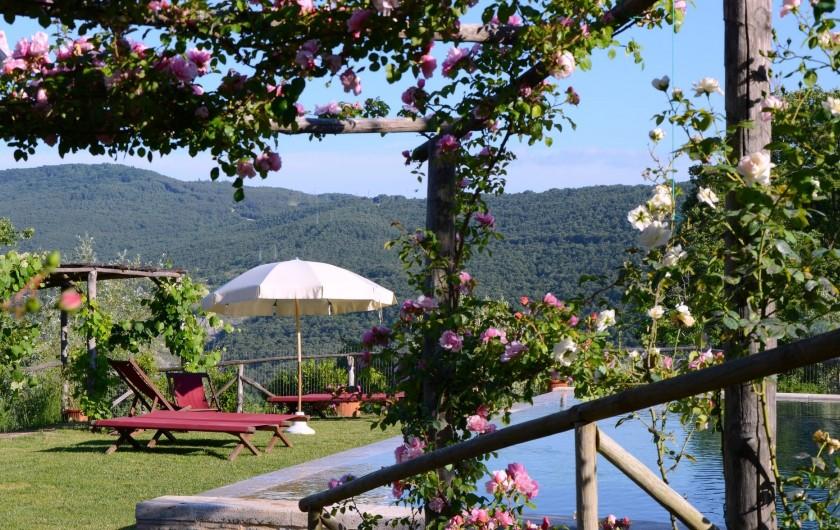 Location de vacances - Mas à Montepulciano - Vers la piscine