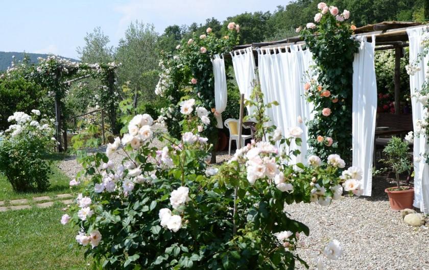 Location de vacances - Mas à Montepulciano - La pergola