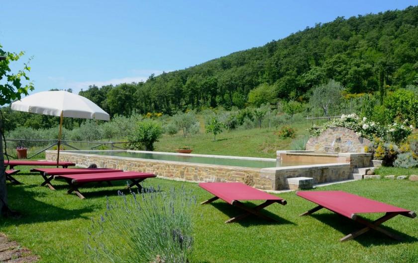 Location de vacances - Mas à Montepulciano - Piscine
