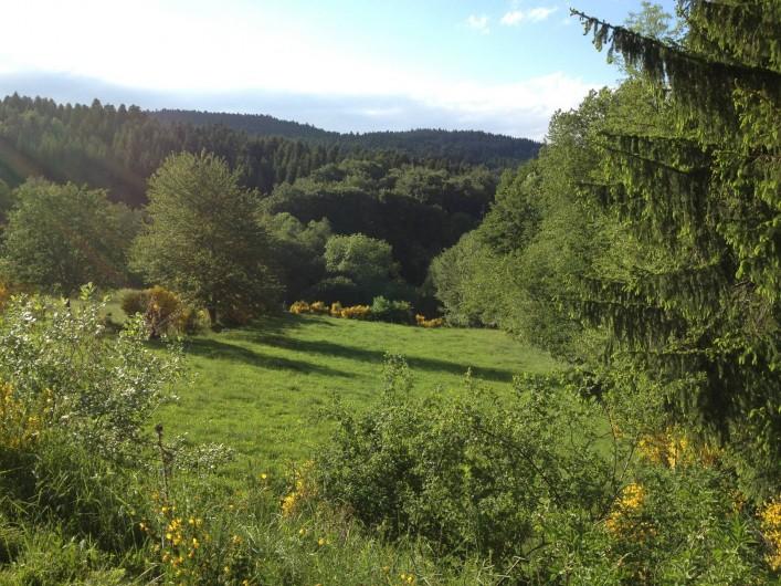 Location de vacances - Gîte à Medeyrolles - sympa le paysage