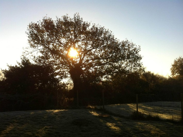 Location de vacances - Maison - Villa à Nivillac - Une matinée d'hiver à La Belle Vilaine.