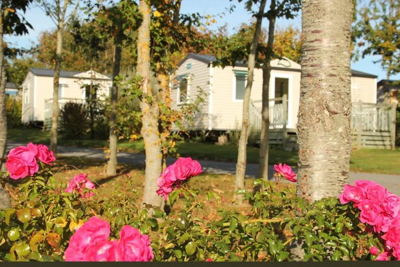 Location de vacances - Camping à Sarzeau - Location Mobile home O'hara sur la Presqu'ile de Rhuys.
