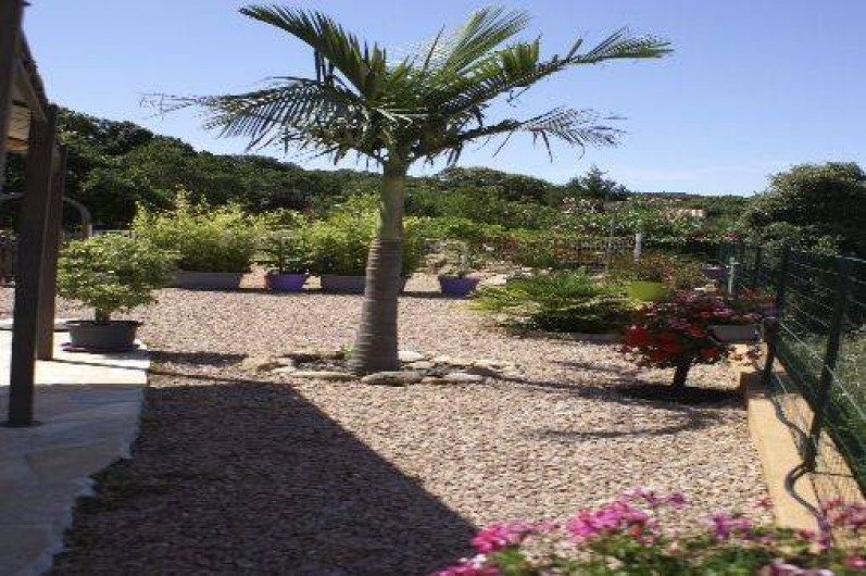 Location de vacances - Gîte à Portigliolo